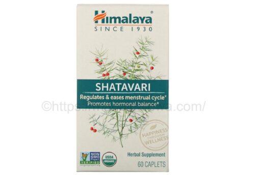 Himalaya-shatavari